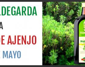 La cura primaveral de Ajenjo según Santa Hildegarda