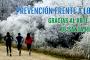 PREVENCIÓN FRENTE A LOS VIRUS