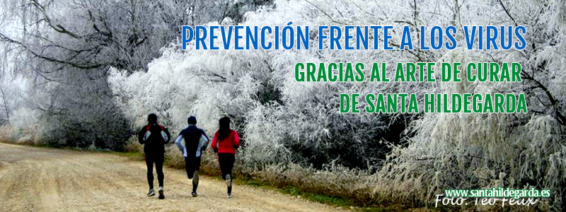imgs_posts_prevencion_frente_virus