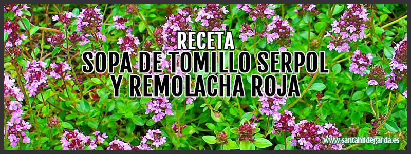 receta-sopa-tomillo-serpol-remolacha-csh